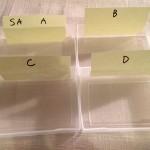 効率的な名刺の分け方とアフターフォロー